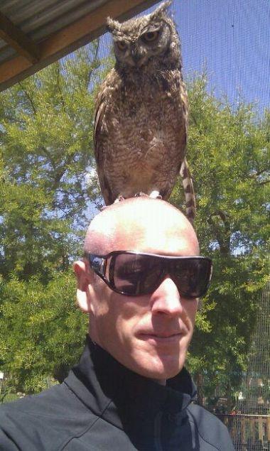 D_owl_on_head