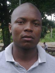 msheshe